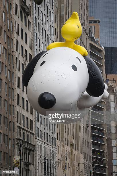 Snoopy balloon Macy's 2014 88th Thanksgiving Day Parade The Manhattan Borough of New York New York USA