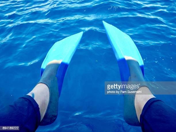 Snorkel Fins POV