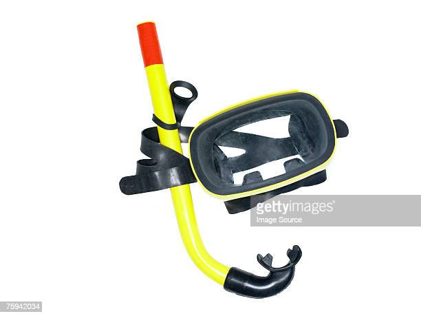 snorkel - snorkeling stock pictures, royalty-free photos & images
