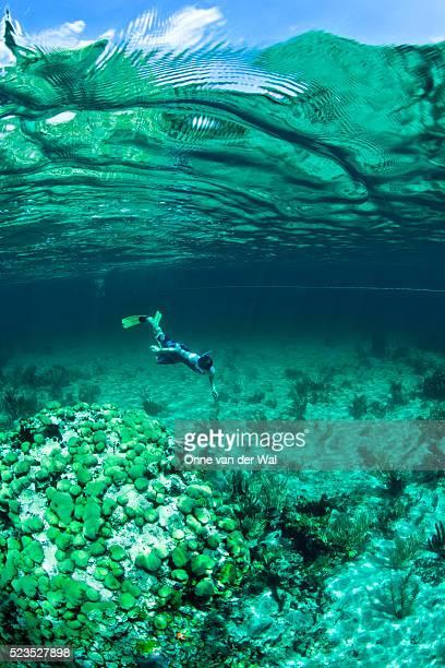 Snorkeler exploring beautiful coral head in the Exumas