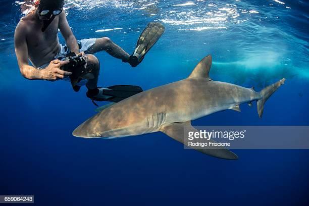 Snorkeler photographing a silky shark (Carcharhinus falciformis), Roca Partida, Colima, Mexico