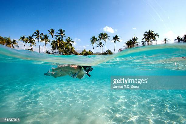 snorkeler - snorkeling stock pictures, royalty-free photos & images