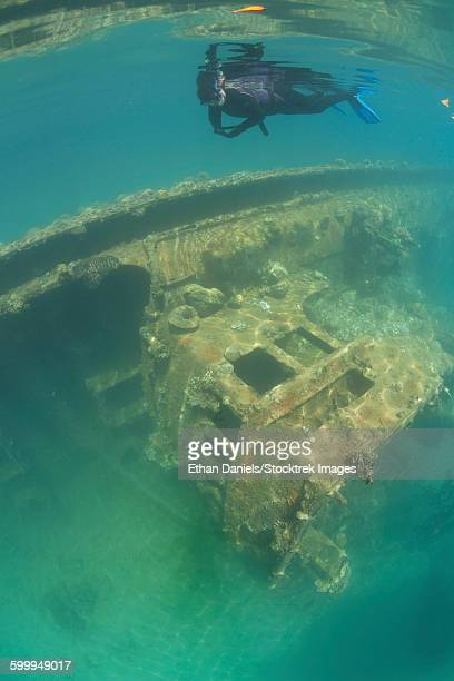 A snorkeler swims above a shipwreck in Palaus inner lagoon.
