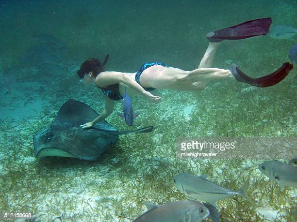 Snorkeler with stingray Hol Chan Marine Reserve Ambergris Caye Belize