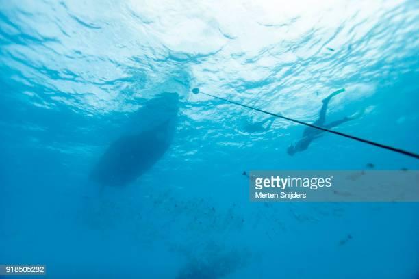 snorkelers around boat and school of fish - merten snijders stockfoto's en -beelden