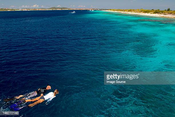snorkelers in the caribbean sea - オランダ領リーワード諸島 ストックフォトと画像