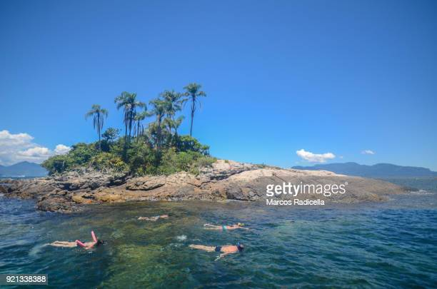 snorkeling at ilha grande, brazil - radicella stock pictures, royalty-free photos & images