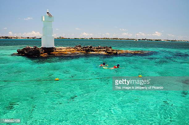 snorkeling at isla mujeres - isla mujeres stock pictures, royalty-free photos & images
