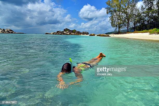 snorkeling at perhentian island, malaysia - terengganu stock pictures, royalty-free photos & images