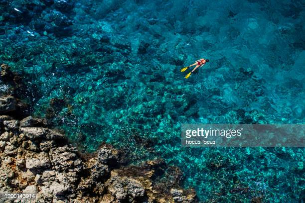 snorkeling in clear turquoise sea - hd format stock pictures, royalty-free photos & images