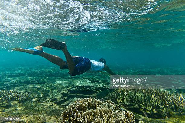 snorkeling in crystal clear water - samoa stock pictures, royalty-free photos & images