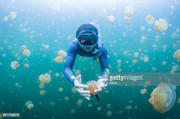 Snorkeling in Jellyfish lake