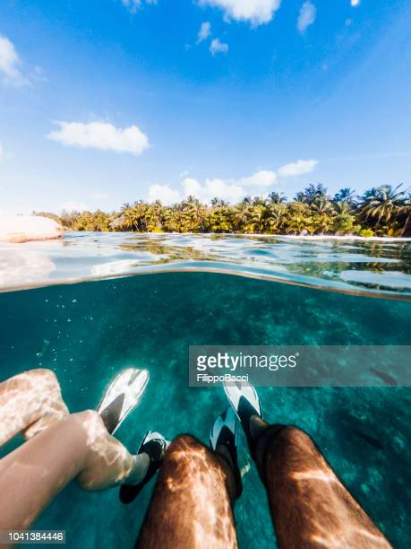 snorkeling in maldives sea - fish love stock pictures, royalty-free photos & images