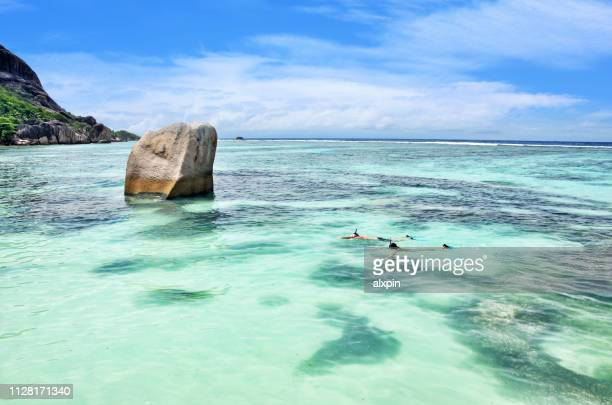 snorkeling in sea - seychelles stock pictures, royalty-free photos & images