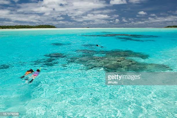 snorkeling nel pacifico del sud - isole cook foto e immagini stock