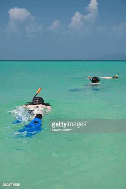 Snorkeling In The Tropical Ocean; Phi Phi Island Thailand