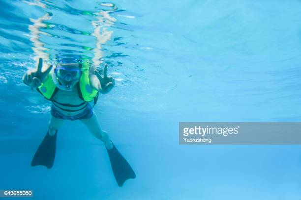 snorkeling in the tropical sea