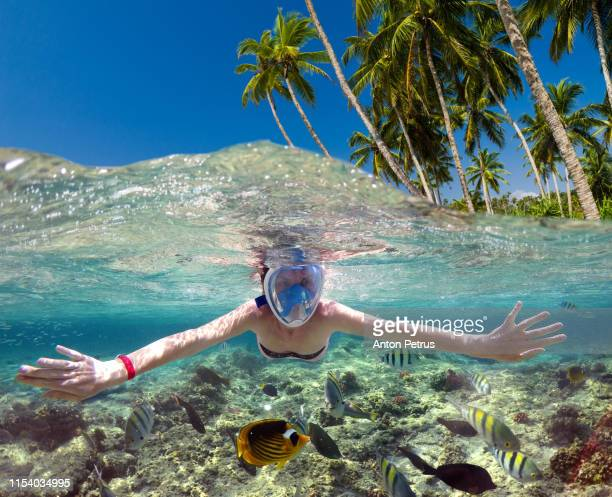 snorkeling near a tropical island. beautiful girl swims in the water. - insel mauritius stock-fotos und bilder
