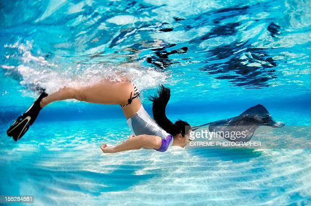 snorkeling with stingray fish - stingray stock photos and pictures