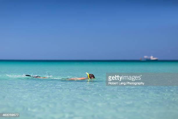 snorkelling at a tropical beach - porto lincoln - fotografias e filmes do acervo