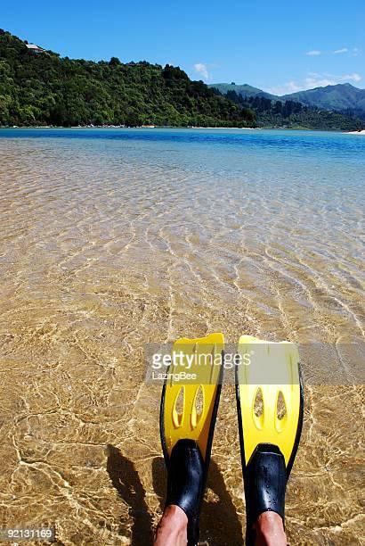 Snorkelling in the Abel Tasman