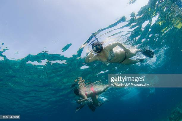 Snorkelling in the Mediterranean sea
