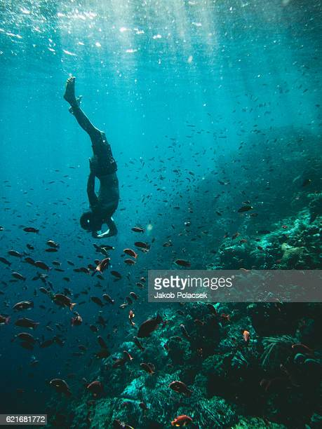 snorkling off the island of flores - east nusa tenggara stock pictures, royalty-free photos & images