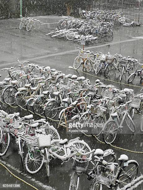 Snow accumulates on bicycles in Musashino Tokyo on the morning of Nov 24 the day when the Japanese capital had snowfall in November for the first...