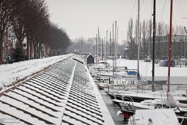 snow along achter op 't zand. - merten snijders stock pictures, royalty-free photos & images