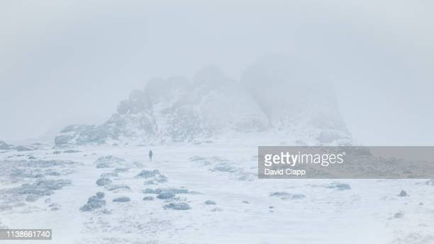 snow and fog on haytor in dartmoor, devon, united kingdom - cold temperature stock pictures, royalty-free photos & images