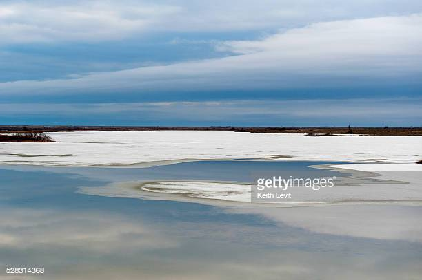 Snow and ice along the shores of hudson bay with a flat landscape; churchill manitoba canada
