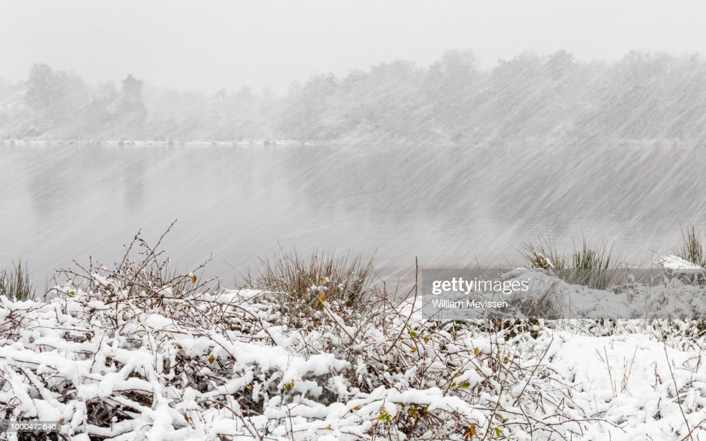 Snow and Wind : Stockfoto