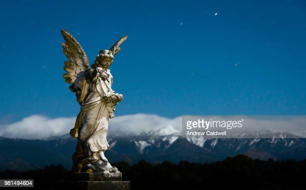 Snow Angel by Moonlight