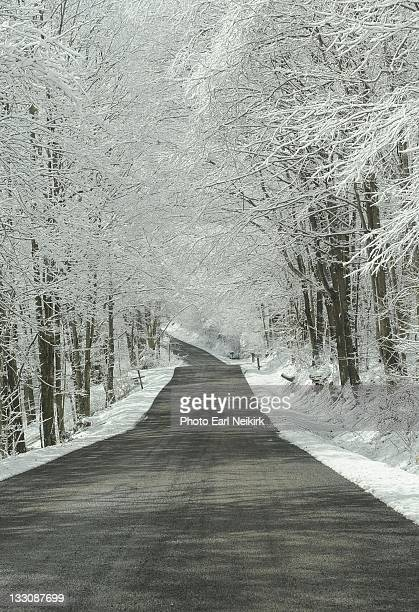 snow archway road - neikirk stock pictures, royalty-free photos & images