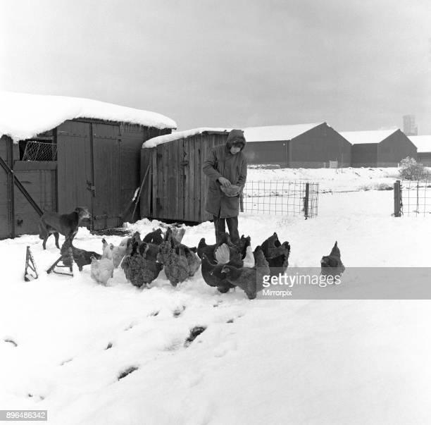 Snow at Stockton Allotments, 1971.