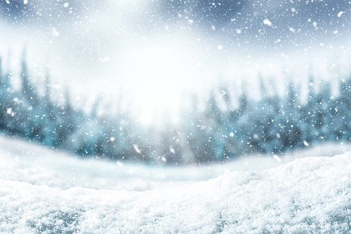 Snow background and tree. Winter backdrop with sunlight in morning time. 1063607204