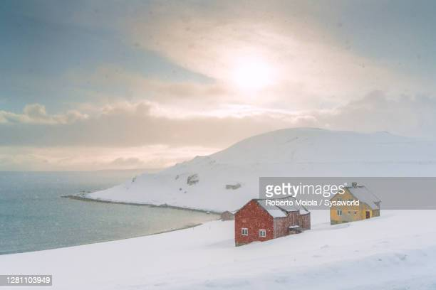 snow blizzard on huts by arctic sea, nordkapp, finnmark, norway - northern norway stock pictures, royalty-free photos & images