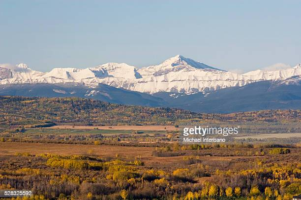 Snow capped mountains with fall colours along the foothills with blue sky; calgary alberta canada