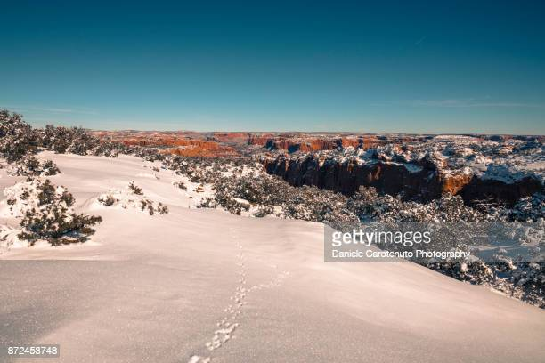 Snow covered Arizona