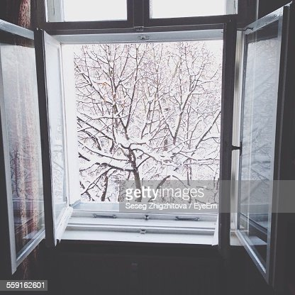 Snow Covered Bare Trees Seem From Open Window