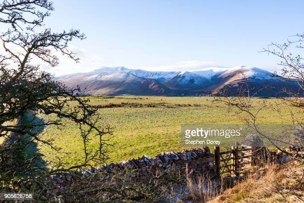 snow covered blencathra from the se in the english lake district near scales, cumbria uk - blencathra stock photos and pictures