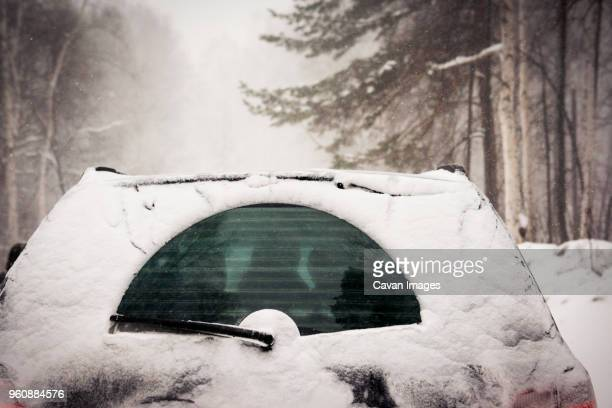 snow covered car in forest - windshield wiper stock photos and pictures