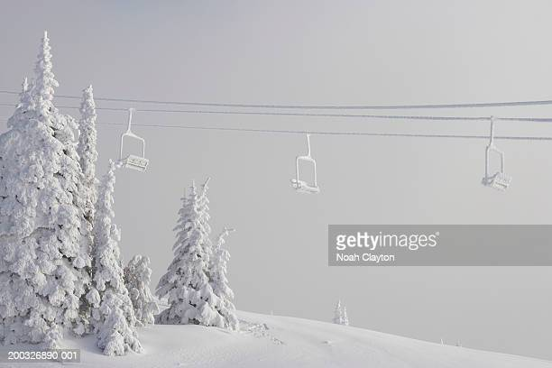 Snow covered chair lifts and trees