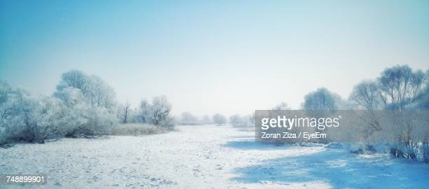 snow covered field against clear sky - 晴れている ストックフォトと画像