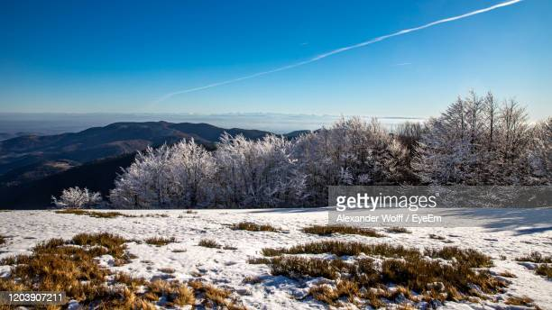 snow covered field against sky - lorraine smothers stock pictures, royalty-free photos & images