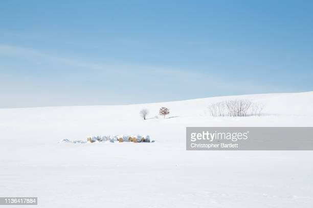 snow covered field, winter landscape, snow covered farm - deep snow stock pictures, royalty-free photos & images