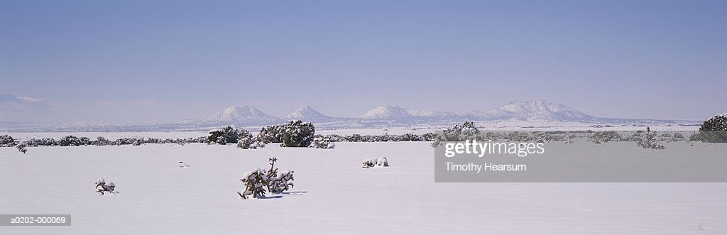 Snow Covered Fields : Stock Photo