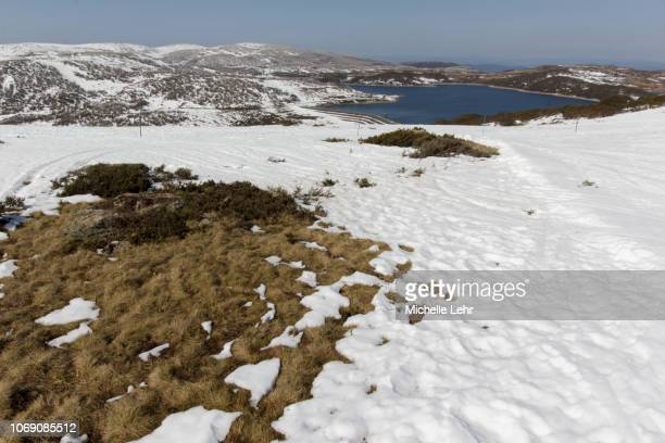 snow covered ground overlooking rocky valley lake in falls creek - snowfield stock pictures, royalty-free photos & images