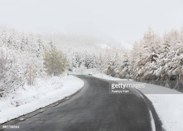 Snow Covered Highway with Guard Rail In Forest