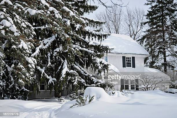 Snow covered house and fir trees